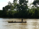 Amazon Rainforest - Arajuno river