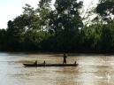 Amazon Rainforest - Arajuno river